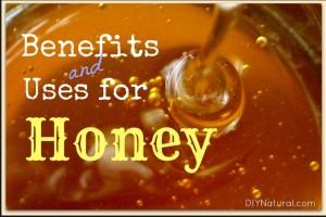 Honey II