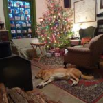 The Loneliness of Christmas