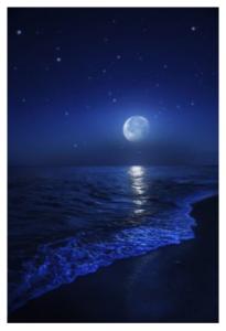 Moon and beach