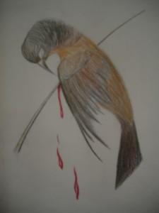 the_thorn_birds_by_tree_bird