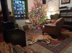 The stillness of Christmas Eve